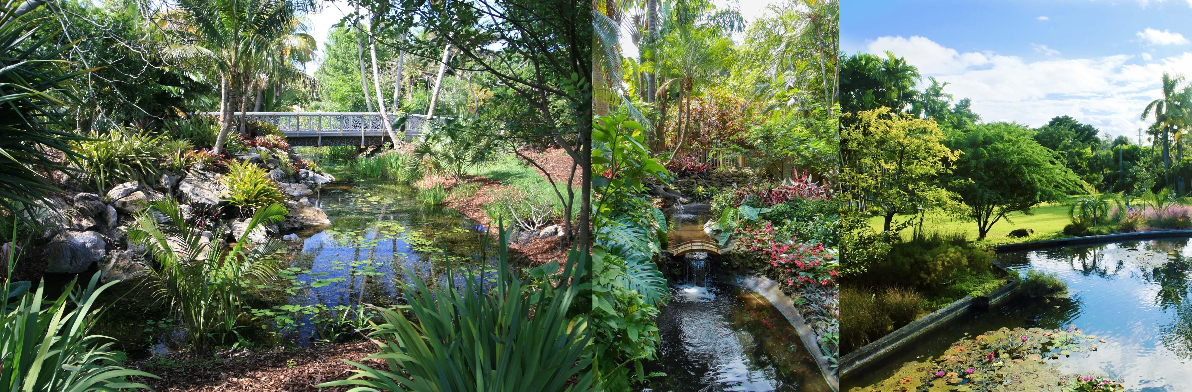 miami beach botanical gardens - venues